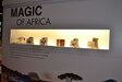 Naturex launched Magic of Africa at Suppliers' Day, a range of extracts such as Kola Nut and Kigelia sourced from Africa.