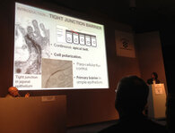 Rawad Tony Abdayem presented on epidermal tight junctions in fully keratinized skin models.