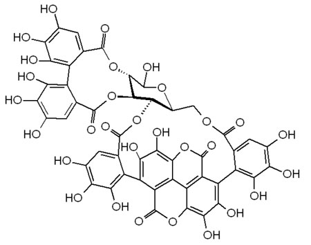 Molecular structure of the standard polyphenol punicalagin
