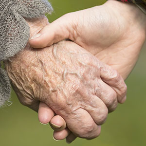 Stem Cell Aging Theories Put to the Test