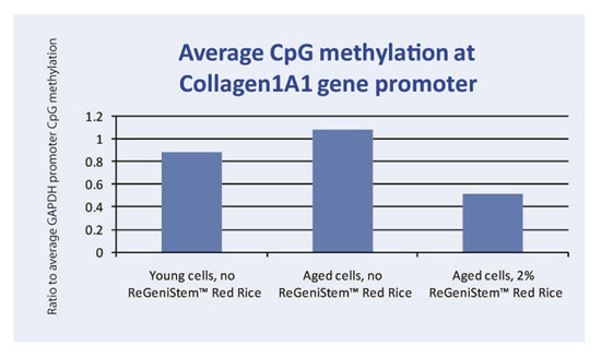 Graph 2. Average CpG methylation at the COL1A1 gene promoter