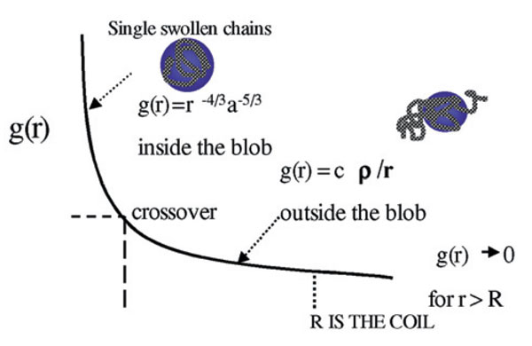 Figure 2. The decrease in blob size as the polymer concentration increases