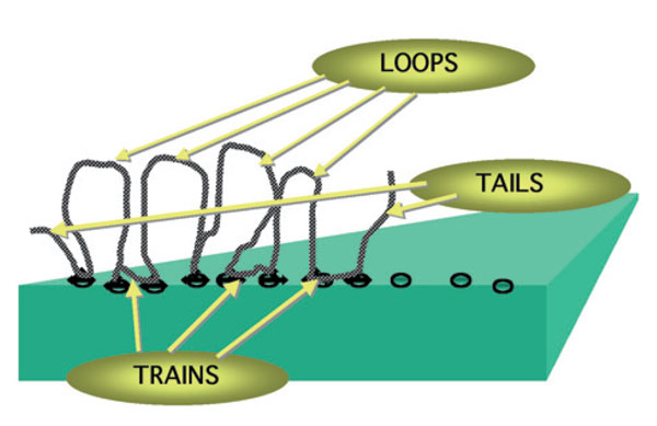 Figure 9. Loops, trains and tails