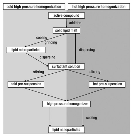 Figure 2. The production process of lipid nanoparticles using cold (left, light gray) and hot (right, dark gray) high pressure homogenization; reproduced with permission from Reference 4.