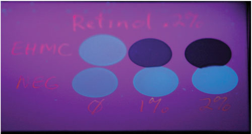 Figure 3. Results of the qualitative fluorescence quenching experiment; the bottom three spots contain the negative controls—i.e. solutions of 0.2% retinol in ethyl acetate with (from left) 0%, 1% and 2% of a non-photoactive diluent.