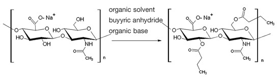 Figure 2. Synthesis of HA butyric esters