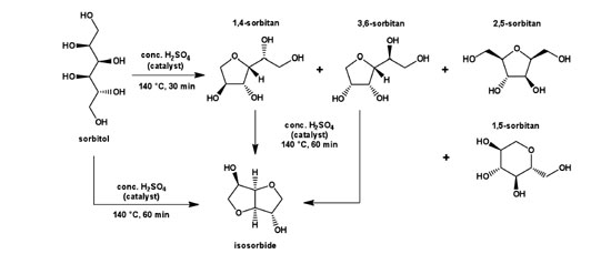 Figure 3. Anhydridization of sorbitol to sorbitan and isosorbide