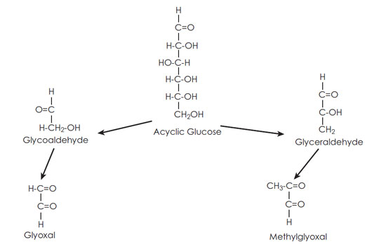 Figure 7. Glyoxal and methlglyoxal produced from glucose without the Maillard reaction