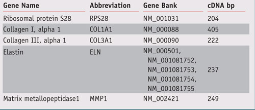 Table 1. Primer sets to amplify the fragment corresponding  to selected genes
