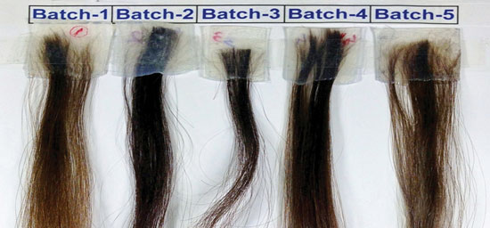 Figure 3. Images of the Caucasian hair tresses tested