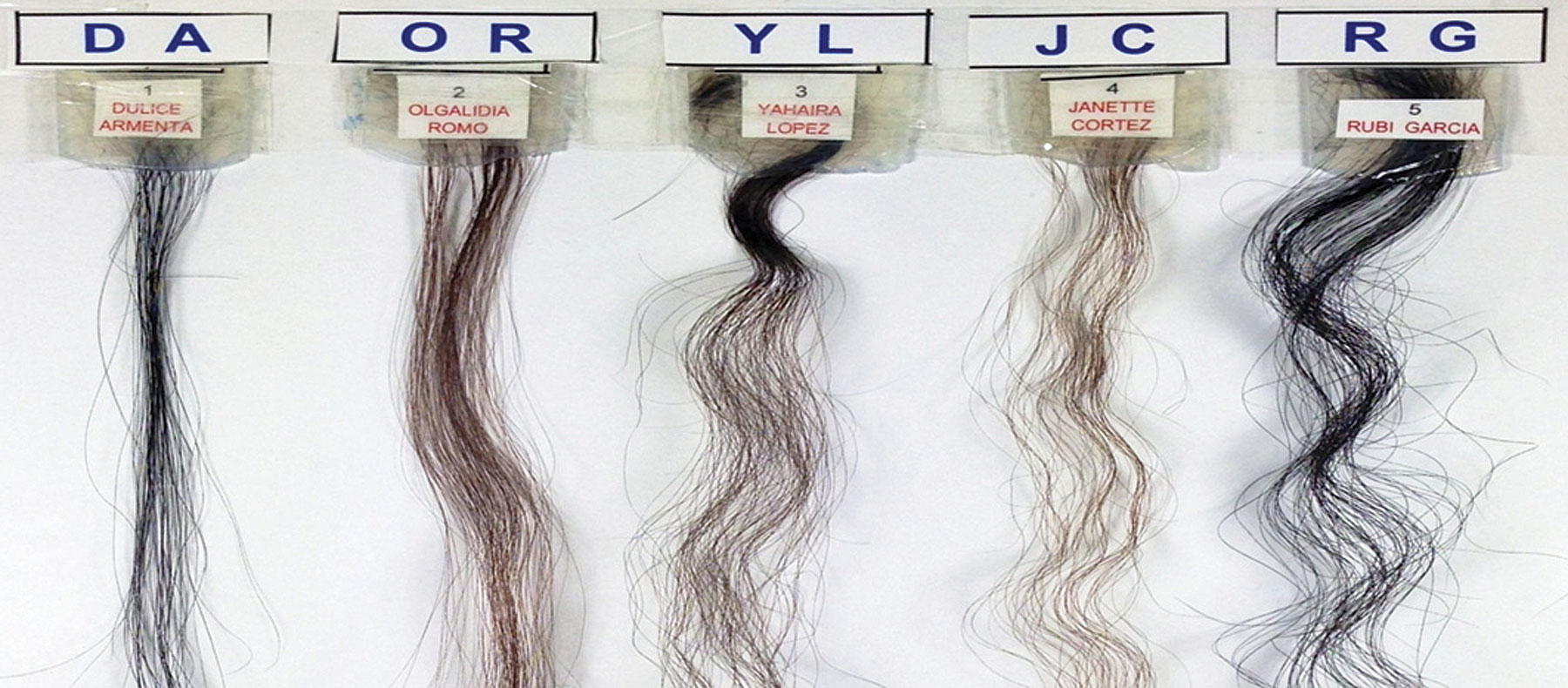 Figure 5. Images of the Hispanic hair tresses tested