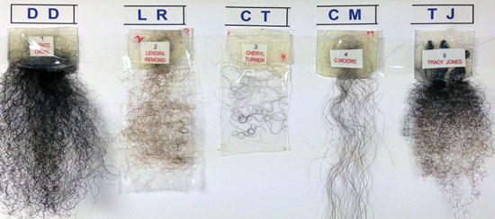 Figure 6. Images of the African-American hair tresses tested
