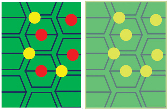 Figure 3. Left: a schematic looking down on the skin surface; Right: Effects when a film of lipid coats the corneocyte