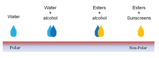 Figure 1. Schematic of a polarity scale showing reference points for water, alcohol, esters and sunscreen filters