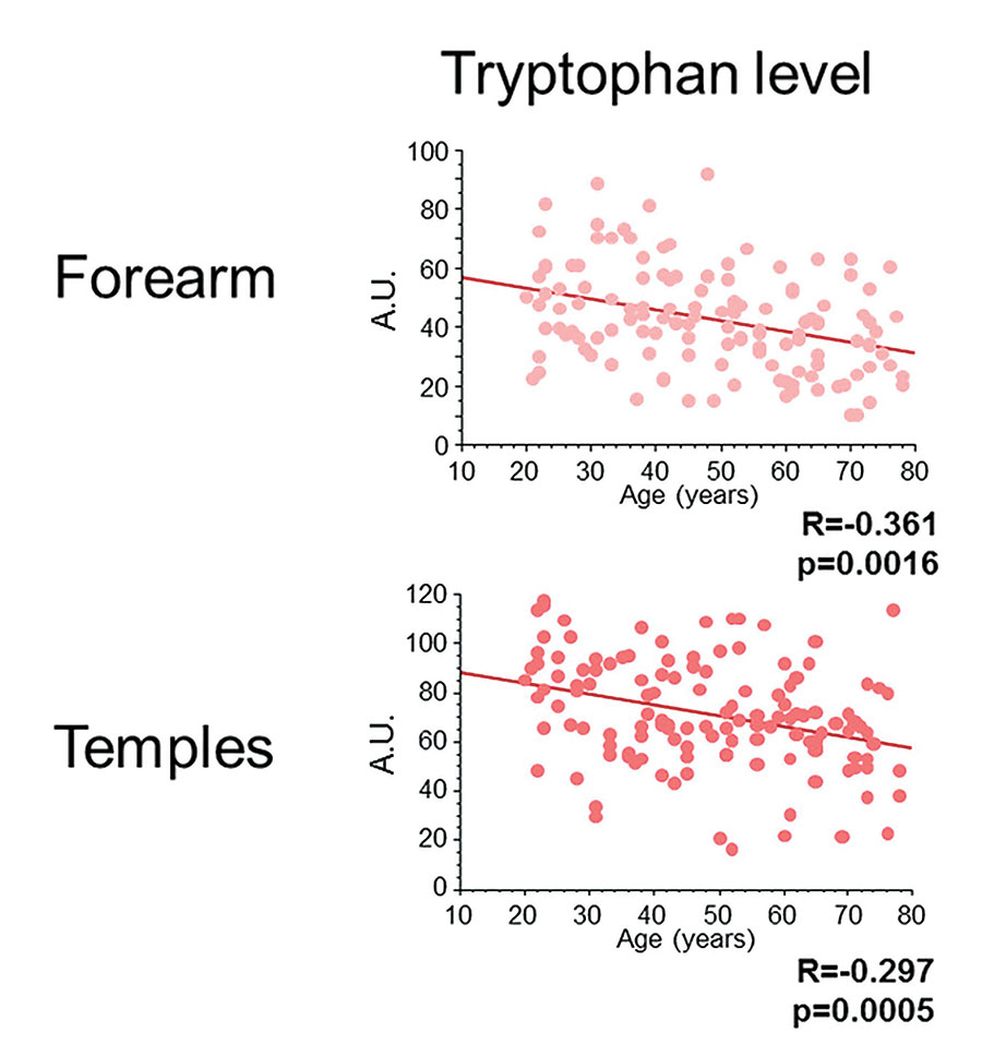 Figure 7. Age-related diminution of tryptophan level on the forearms and face (temples)