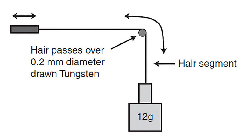 Figure 1. Movement of hair for test