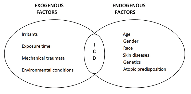 Figure 2. Exogenous and endogenous risk factors for irritant contact (chronic) dermatitis