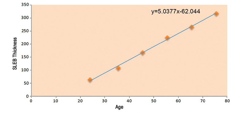 Figure 3. Linear relationship between age and thickness of the SLEB; adapted from Querleux