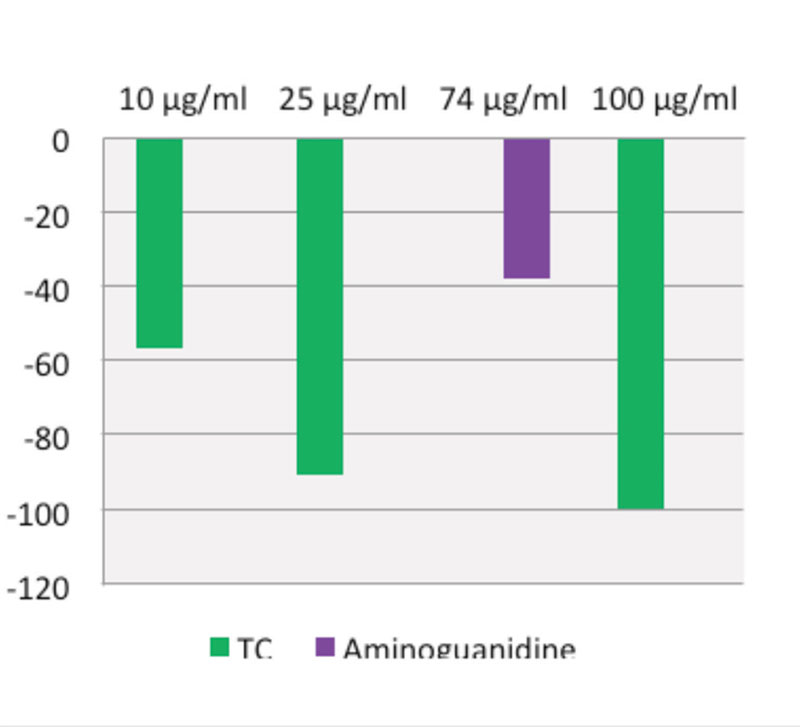 Figure 4. Percent reduction in glycation: TC vs. aminoguanidine