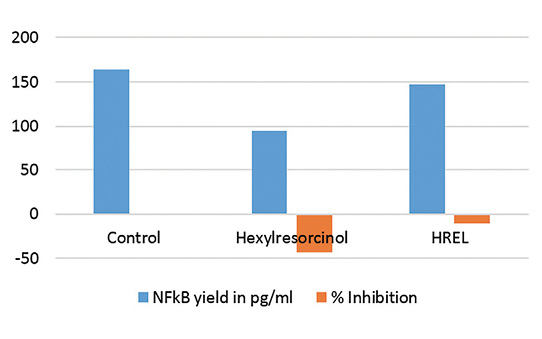 Figure 6. Reduction in NF-κB protein formation by HR vs. HREL