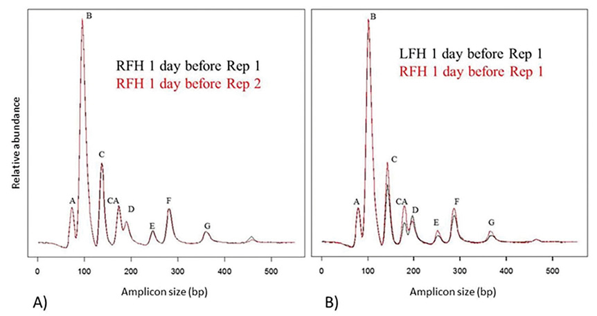 Figure 1. Ribosomal intergenic spacer analysis electropherograms