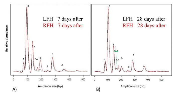 Figure 2. Fingerprint comparison of LFH and RFH extractions