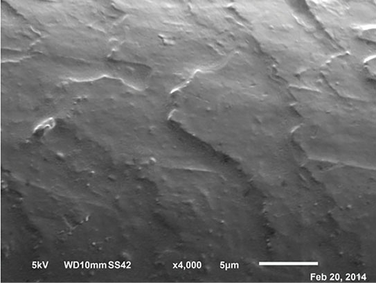 Figure 6. SEM image showing conditioner deposits smoothing the cuticle structure