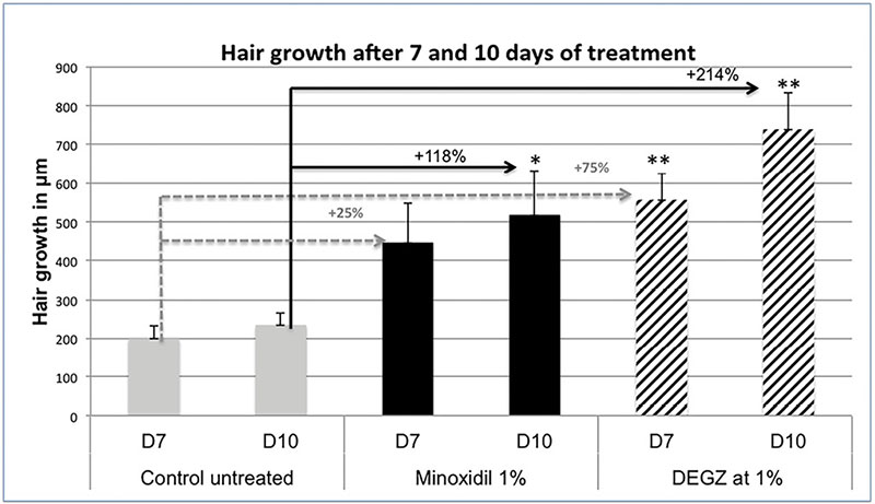 Figure 5. Androgenic alopecia hair follicle growth studies (microscopic measurements)
