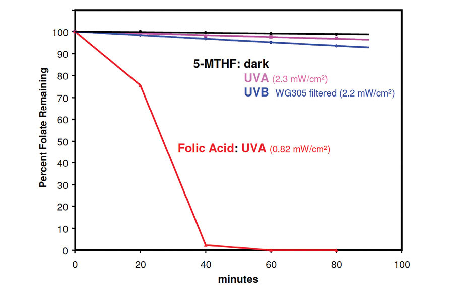 Figure 2. Photo-decay of 5-MTHF