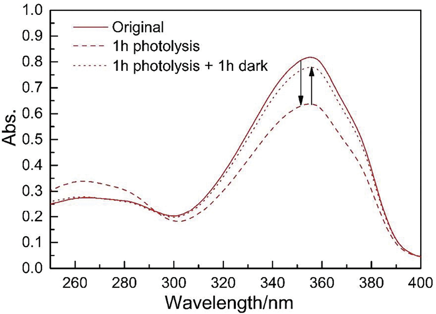 Figure 6. UV-vis spectrum of avobenzone in acetonitrile (2 x 10<sup>-5</sup>M)