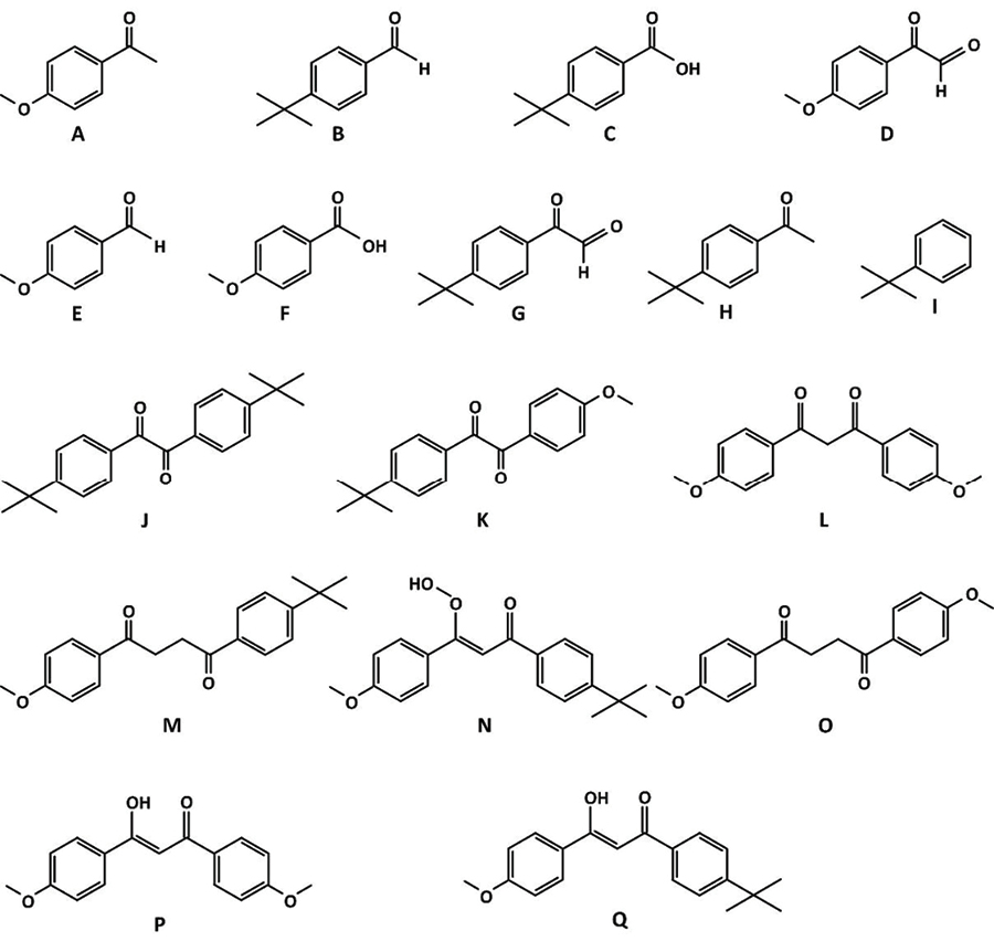 Figure 8. Possible products formed from the photodegradation of avobenzone