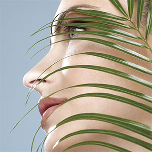 Plant-Based Hydrogels: Applications in Cosmetics