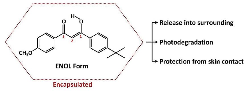 Figure 11. Encapsulation of avobenzone with possible consequences
