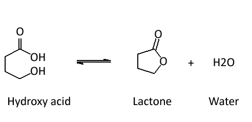 Lactones are esters in a ring structure.