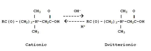 Cocamidopropyl betaine has two structures based upon pH