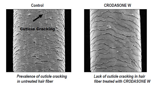Figure 3. Crodasone W offers protection from heat styling
