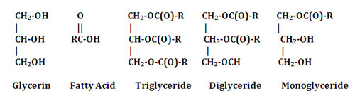 Man-made glyceryl esters