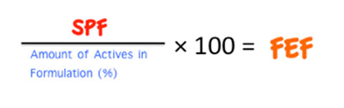 Equation for calculating FEF