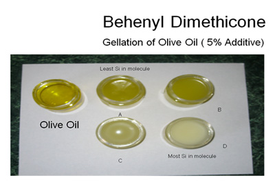 The gellation of olive oil with behenyl dimethicone
