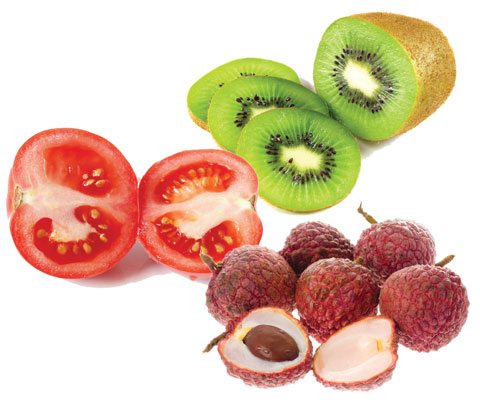 Figure1. Fruits (tomato, kiwi, lychee) for feeding the skin 