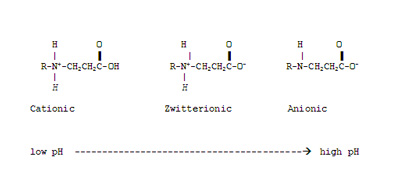 Charge of amphoteric compounds depending upon pH