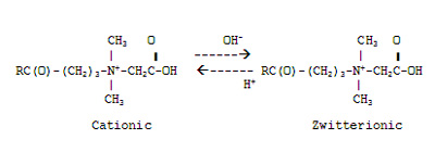 Ampholytes can only be cationic or zwitterionic
