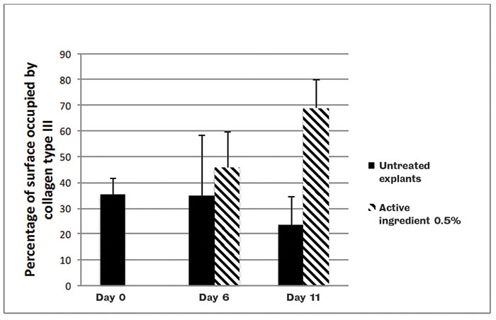 Figure 5. Collagen type III content in human skin explants with or without a topical application of the active ingredient at 0.5%; image quantification analysis