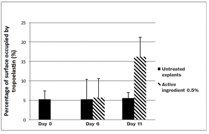 Figure 7. Elastin content in human skin explants with or without a topical application of the active ingredient at 0.5%; image quantification analysis