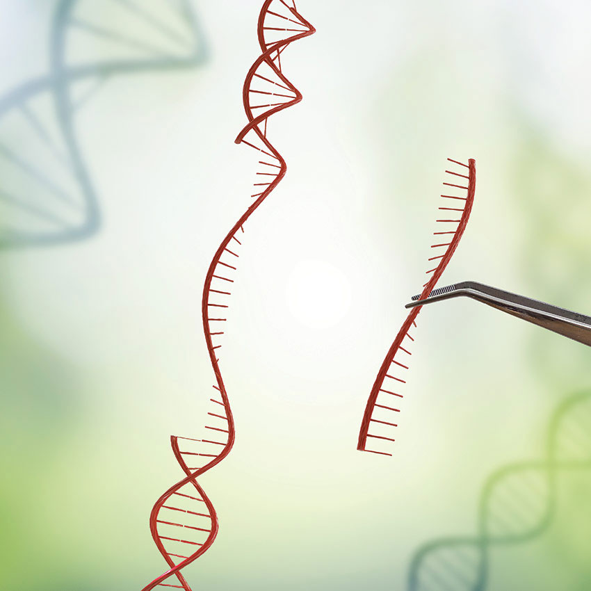 Industry Insight: CAS9 and CRISPR Technology, Implications for Cosmetics?