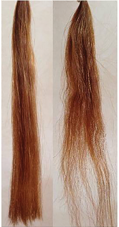 Figure 5. Results after wet combing