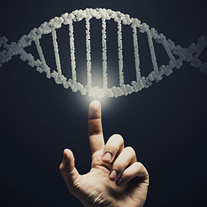 Comparatively Speaking: Genome vs. Epigenome