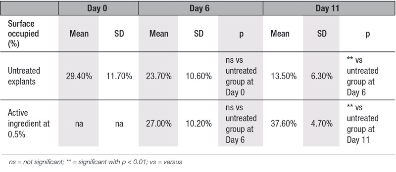 Table 3. Collagen type I content in human skin explants with or without active ingredient at 0.5% (image quantification analysis)
