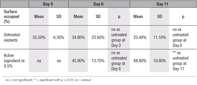 Table 4. Collagen type III content in human skin explants with or without a topical application of the active ingredient at 0.5%; image quantification analysis