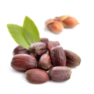 Cosmetics Industry Driving Growth for Jojoba Oil Market